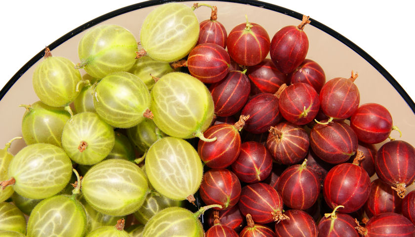 red and green gooseberries