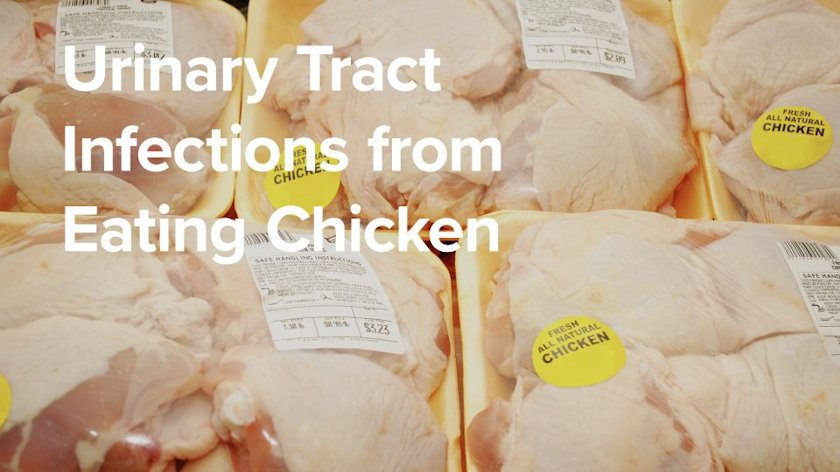 Urinary Tract Infections from Eating Chicken