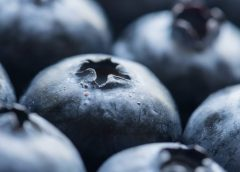 Benefits of Blueberries for Heart Disease
