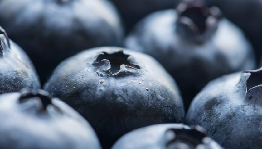 Blueberries for Heart Disease
