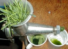 Wheatgrass Juice for Ulcerative Colitis