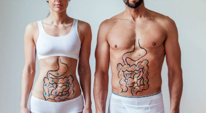 Plant-Based Diets Promote Healthy Gut Microbiome