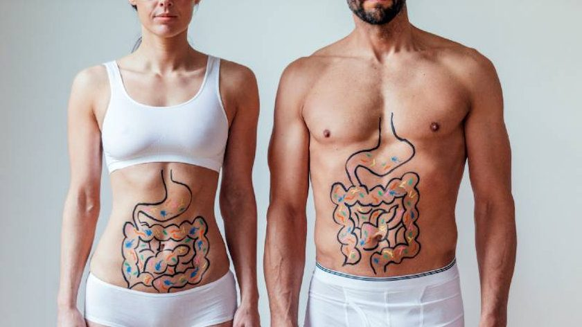 Healthy Gut Microbiome