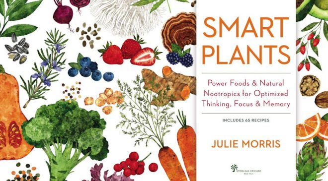 Smart Plants: Power Foods for Optimized Thinking, Focus & Memory